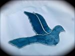 colombe-bleue